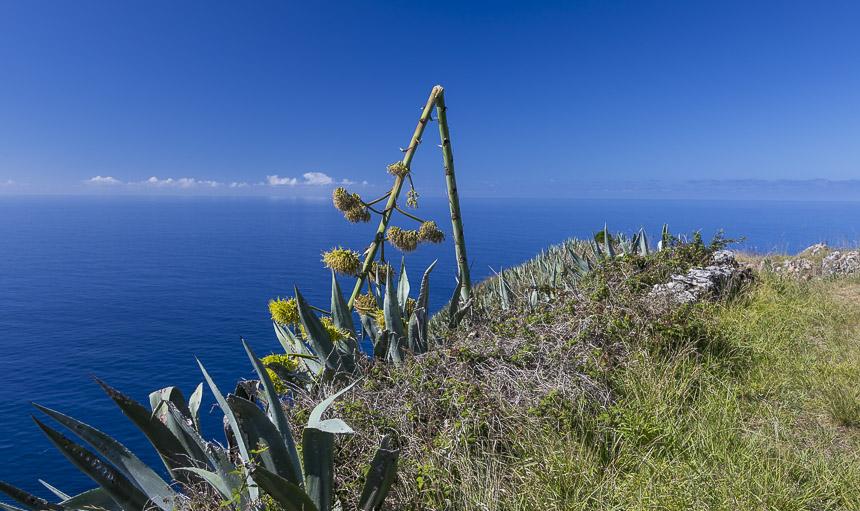 von Madeira zu den Azoren (Santa Maria)